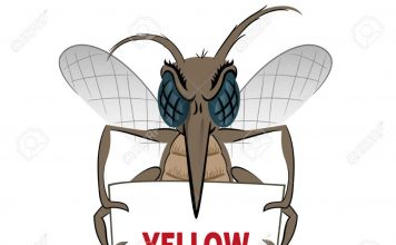 Mosquito stilt holding poster yellow fever Ideal for informational Stock Photo